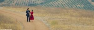 Destination Wedding - Was sich liebt, das neckt sich