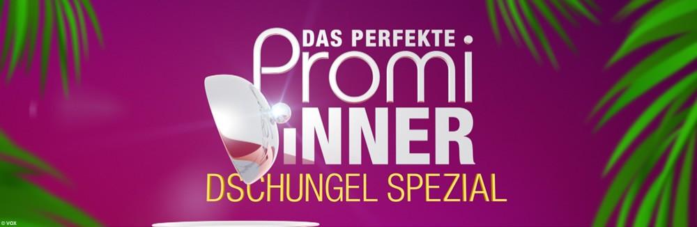 Das Perfekte Promi Dinner Verliert Ohne Honey An Zuspruch