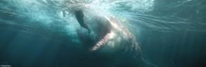 Meg: Weder Der weiße Hai noch Sharknado